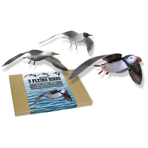 3 Flying Seabirds 3D card mobiles