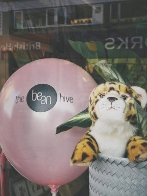 Suki Cheetah and the Bean Hive balloon in a window display