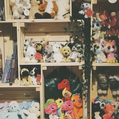 Soft Toy Display at Young Thinkers Guild, September 2018