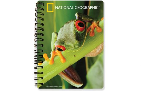 National Geographic's Red-Eyed Tree Frog 3D Notebook-Kidicraft