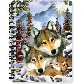 Howard Robinson's Wolf Harmony 3D notebook - Kidicraft